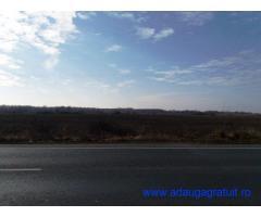 Parcela 6,3 hectare DN6 Ghiroda - Remetea Mare